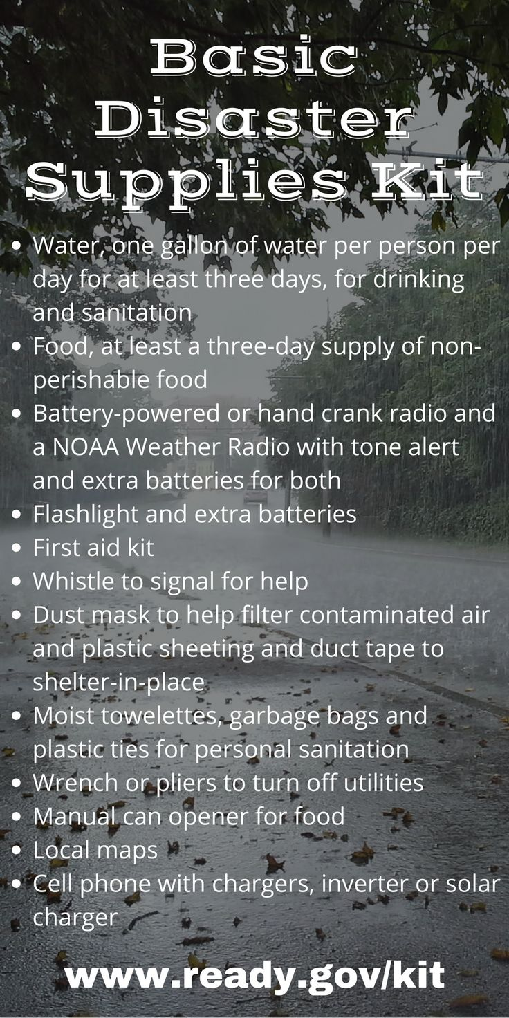 Basic Disaster Supplies Kit from ready.gov