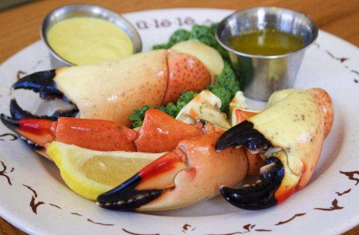 ulele florida Google Search Stone crab season, Stone