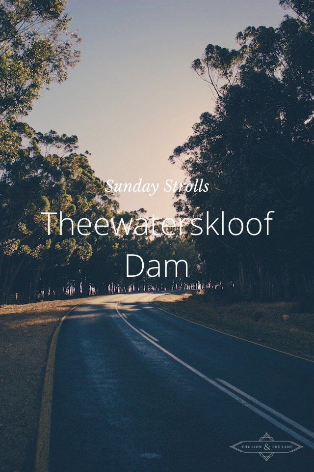 The Lion & The Lady on Steller // Theewaterskloof Dam