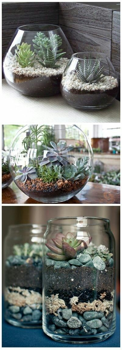 Heb je vazen of glazen potten over? Dan is dit wel een super leuk idee. Benodigdheden: Glazen pot Aarde Plantenvoeding Steentjes Plantjes Veel