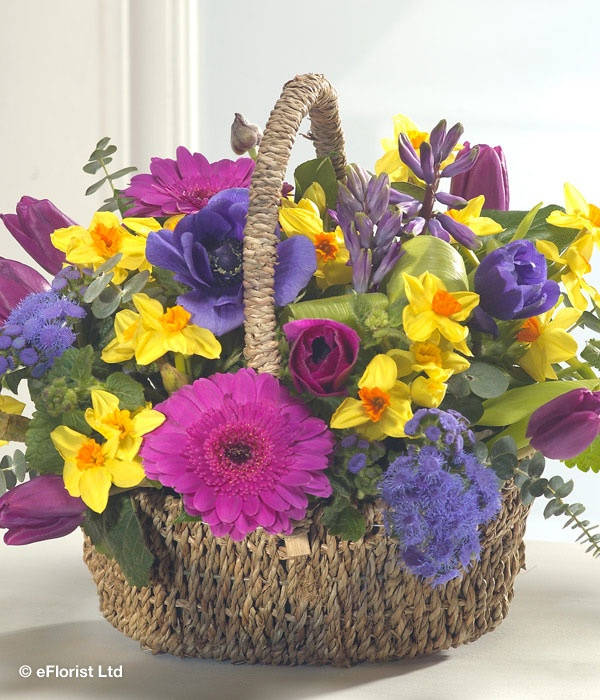 21 best spring flowers images on pinterest spring colors spring spring break bold and beautiful this flower basket is a must have this spring flowers mightylinksfo