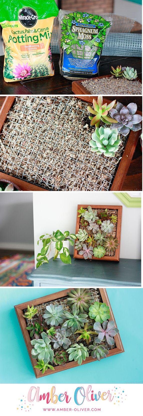 How to make a DIY succulent planter. A beautiful vertical garden!