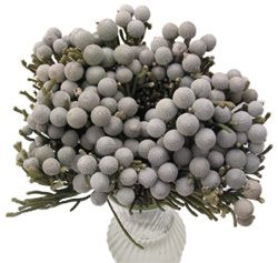 silver brunia....absolutely gorgeous in a cluster by itself or as an accent in a bouquet...expensive and seasonal though, only local to AU