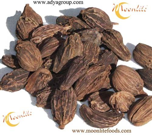 """Indian Spices : Black Cardamom """"Kali Elaichi""""  At Moonlite Foods Inc we are manufacturer of whole Indian Spices and we are also worldwide suppliers of our these best quality spices.  Black Cardamom also known as 'Kali Elaichi' is one or our products."""
