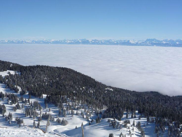 Cette mer de  nuages dans le #Jura recouvre le lac Léman. Au loin les Alpes : http://www.carnets-nordiques.com/dole-jura/