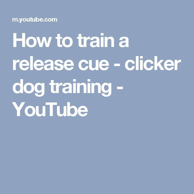 How to train a release cue - clicker dog training - YouTube