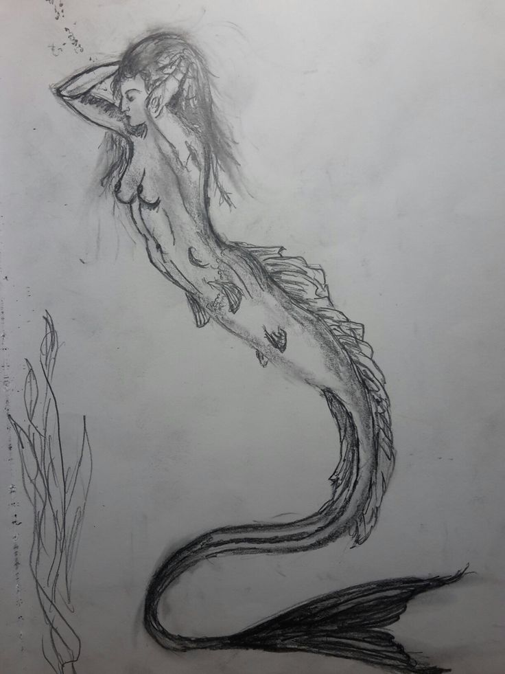 Day 7 --------- A sketch a day #mermaid #ASketchADay #sketch #art