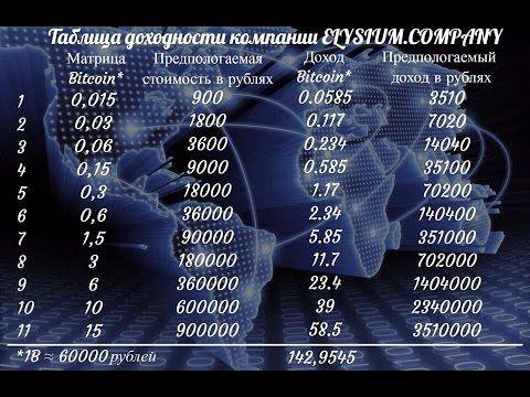 Elysium Company проект 5 95
