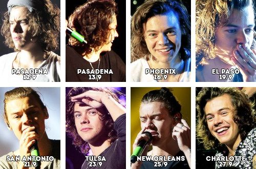feather cut hairstyle : See the Evolution of Harry Styles Hair on the Where We Are Tour!