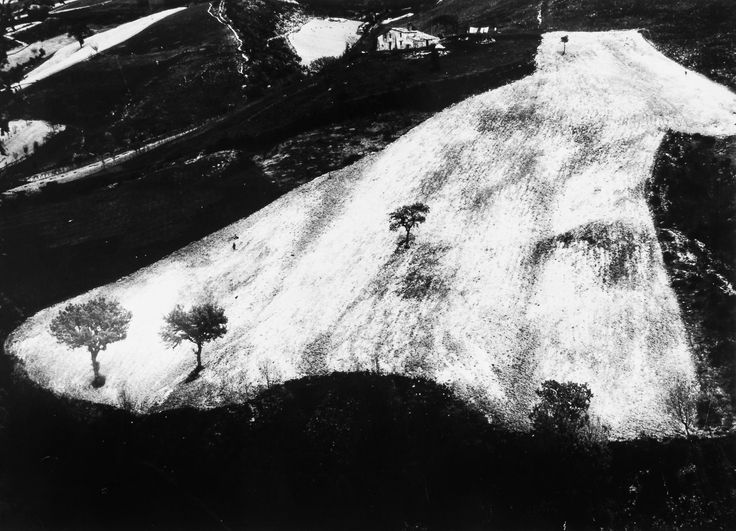 from the [ Presa di coscienza sulla natura / On being aware of nature ] series (1964)by Mario Giacomelli (1925-2000)