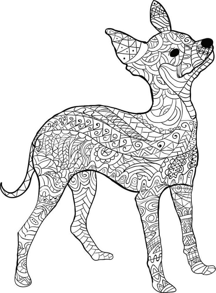 kostenloses ausmalbild hund - pinscher. die gratis mandala