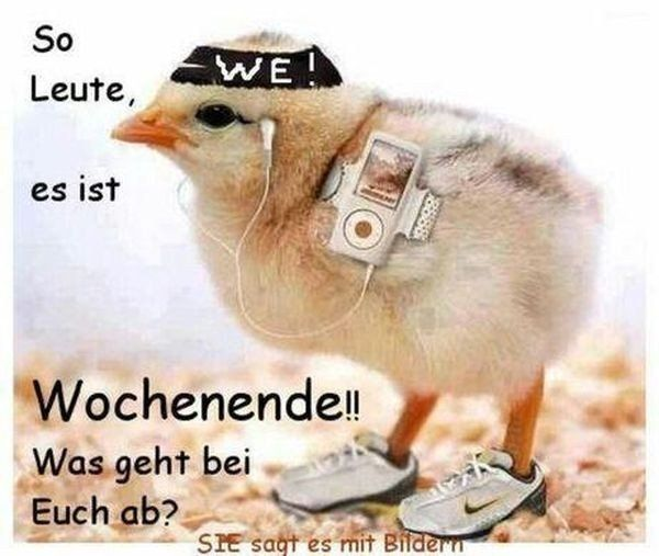 Free german retro porn