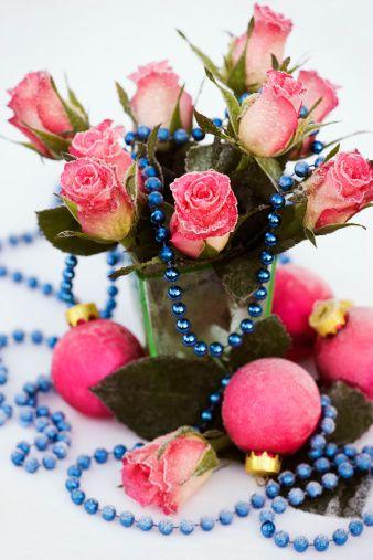 Crăciun, încă de viață cu ger acoperit de trandafiri roz (Rosa) și fleacurile