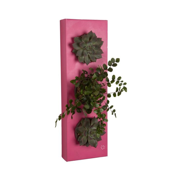 K-Pot 3 - Flowerbox Türkiye, Doğayı duvarlarınızda keşfedin