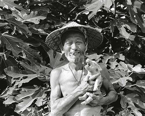 Toshiteru Yamaji: Pig and Papa.