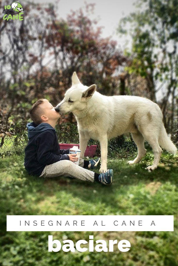 Fatti dare un bacio dal tuo cane senza che ti sporchi di saliva