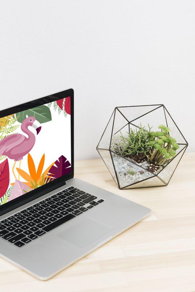 Best Websites Development Company Web Development Design Web Design News Web Design