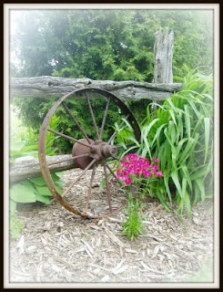 Have This In My Yard, Framing The Driveway, Complete With The Wagon Wheels!