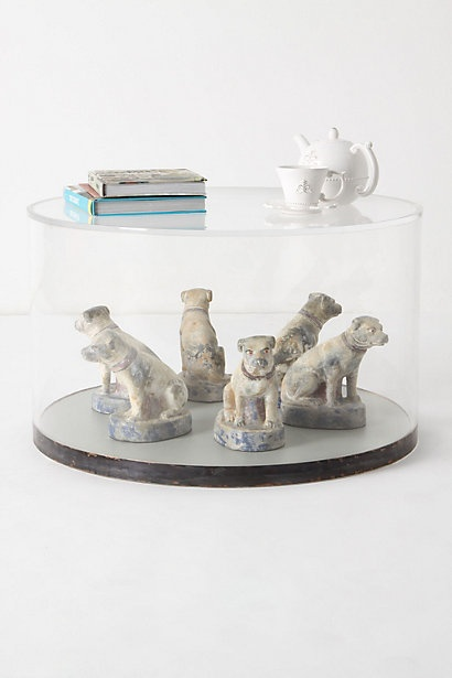 terriers under lucite