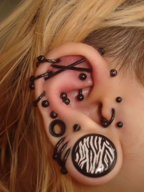 multiple ear piercings   <3 the double industrial. Apart le gros strech, maudit que ce beau!