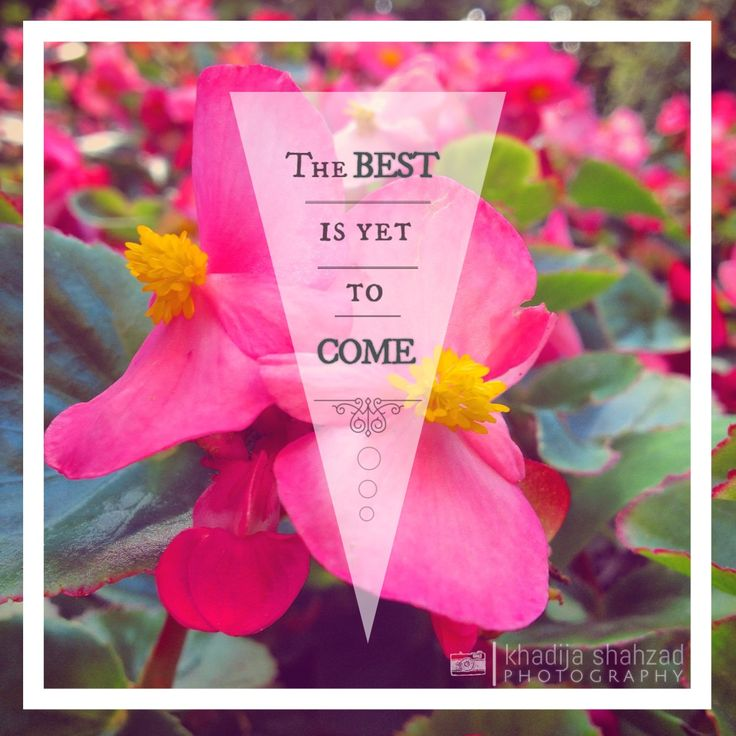 THE BEST IS YET TO COME.... #best #quote #inspiration #madewithstudio