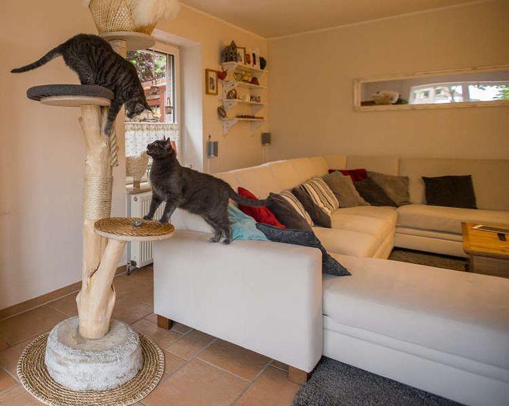 die 25 besten ideen zu kratzbaum selber machen auf pinterest kratzbaum katzenzubeh r und diy. Black Bedroom Furniture Sets. Home Design Ideas