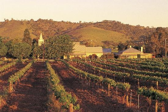 Vineyards, Barossa via Trip Advisor