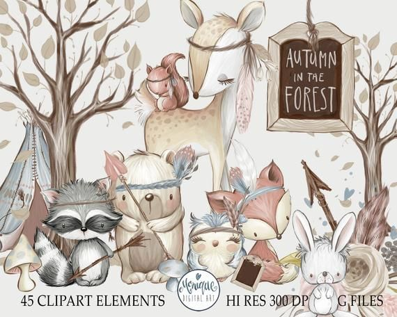 Autumn Woodland Baby Animals Clipart Raccoon Rabbit Bunny Etsy In 2021 Baby Animals Cute Squirrel Animals Clipart