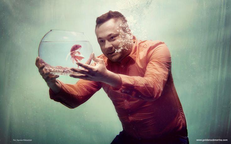 underwater, tank, fish, water glass