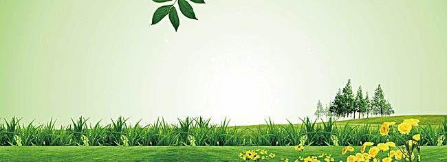 Beautiful Natural Green Background Beautiful Scenery Pictures Spring Background Background