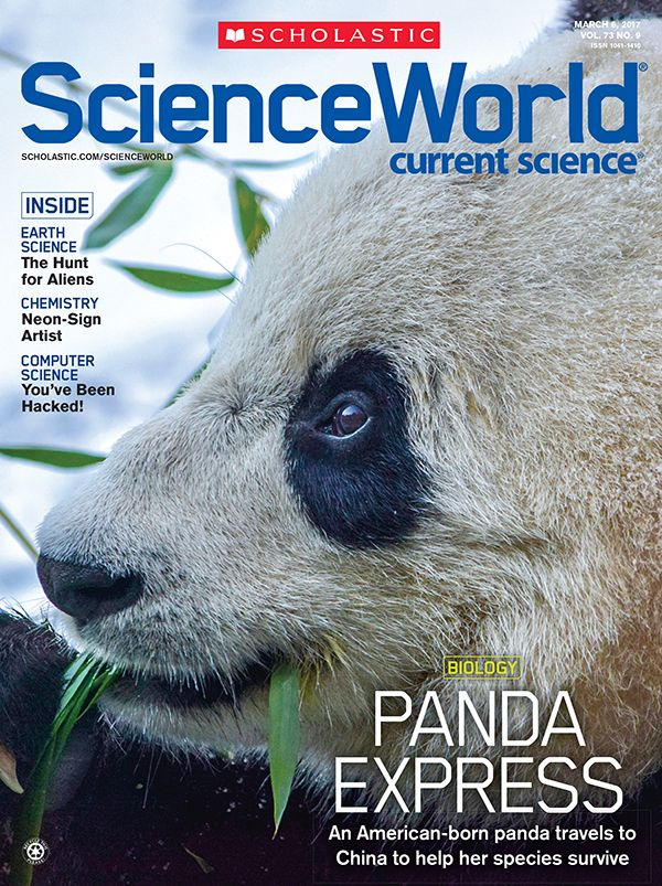 Science World magazine's cover story breaks down what it took to send Bao Bao, an American-born panda, to her new home in China this week. Download the story and 4 skills sheets, including one that asks students to identify the central idea and supporting details from each of the feature's sections.  #ScienceWorldMag #BaoBao #Panda #Science