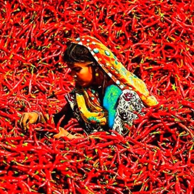 Hot Chilli Woman...