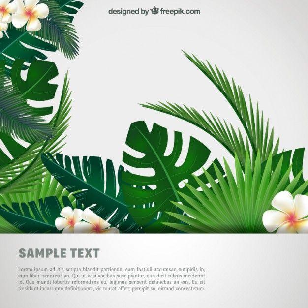 Fondo tropical Vector Gratis