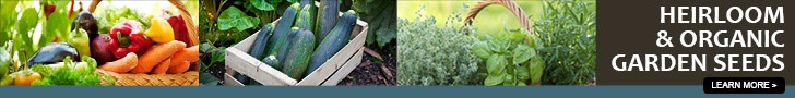 organic fertilizer to make yourself