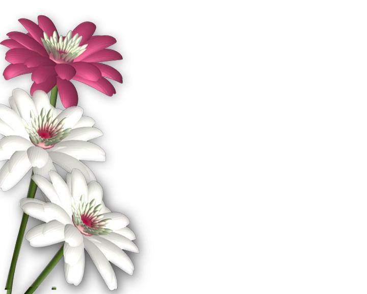 floral design wallpaper borders - photo #45