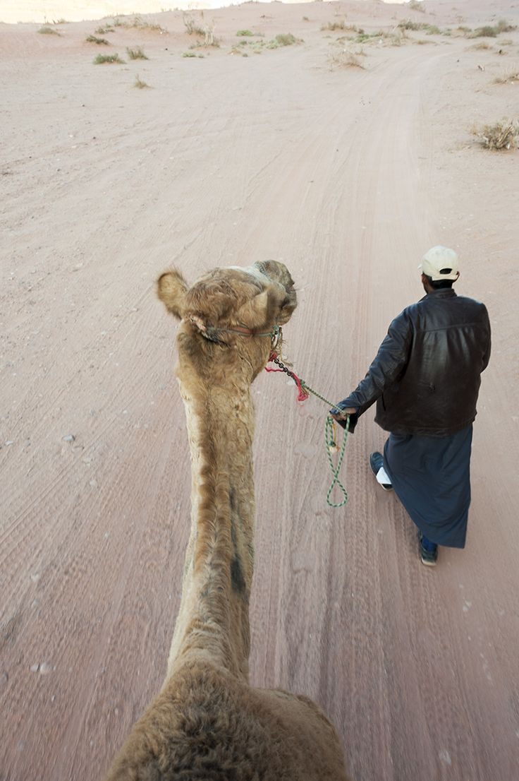 Adventure activities in Wadi Rum, Jordan - camel rides, climbing, hiking and stargazing