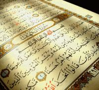 Tolerance: ~Looking Back~ Qur'ans for peace: what one person can do