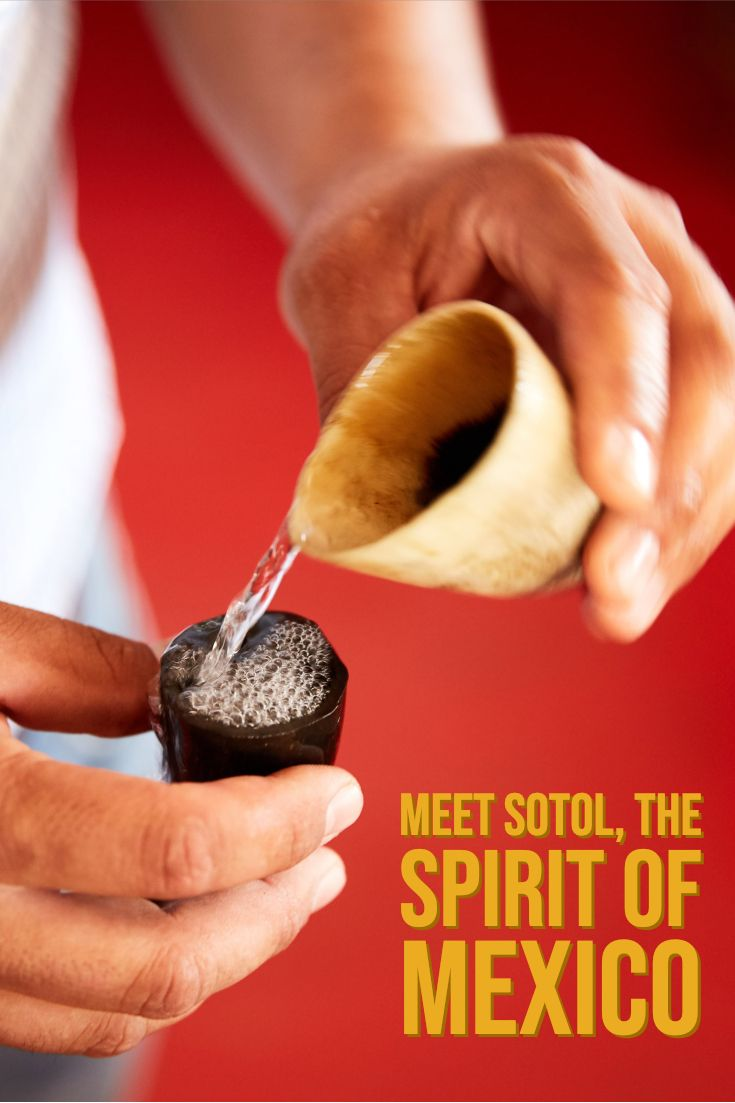 Meet Sotol The Spirit Of Mexico Wine Enthusiast Mezcales