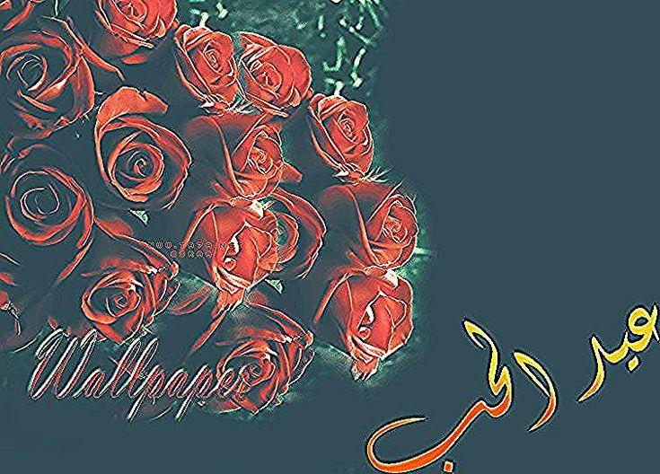 اجمل وردة عيد الحب احلى ورده في عيد الحب Abstract Artwork Art Artwork