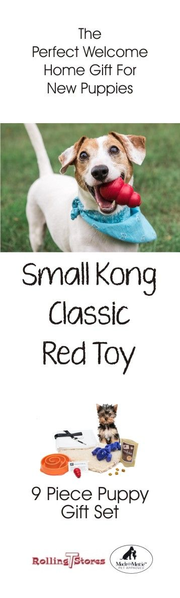 Super-bouncy, red natural rubber compound is perfect for dogs that like to chew. Plus free in this bundle recipe card for Kong Toy filler food.