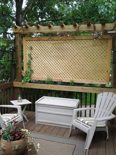 Our Privacy Screen In The Summer Our Deck Is Just Off