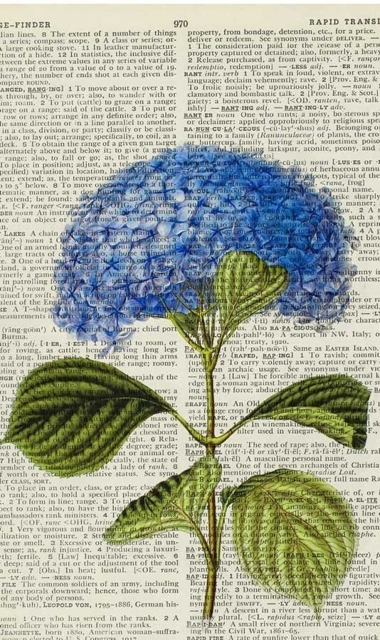 vintage hydrangea printed on page from old dictionary ... great for journals or cards