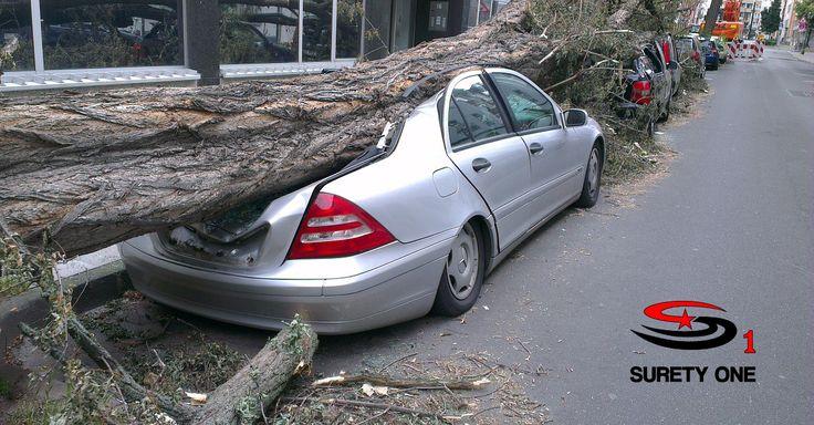 New york public adjuster bond car insurance auto