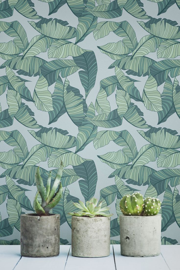 Embrace the jungle fever with this tropical wallpaper design. Showcasing a bunch of illustrated leaves in luscious tones of green, this design adds vibrancy and fun into your interiors. It's the perfect solution to boring and dull hallway spaces.