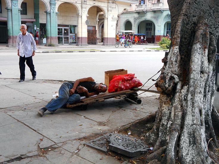 Descanso (Votar por esta obra en http://observarte.net)