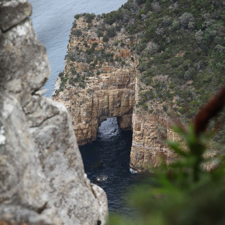 This moving clip of the Three Capes Track in Tasmania tears at your heart strings, completely capturing you. And the Track ... well it delivers in every sense.