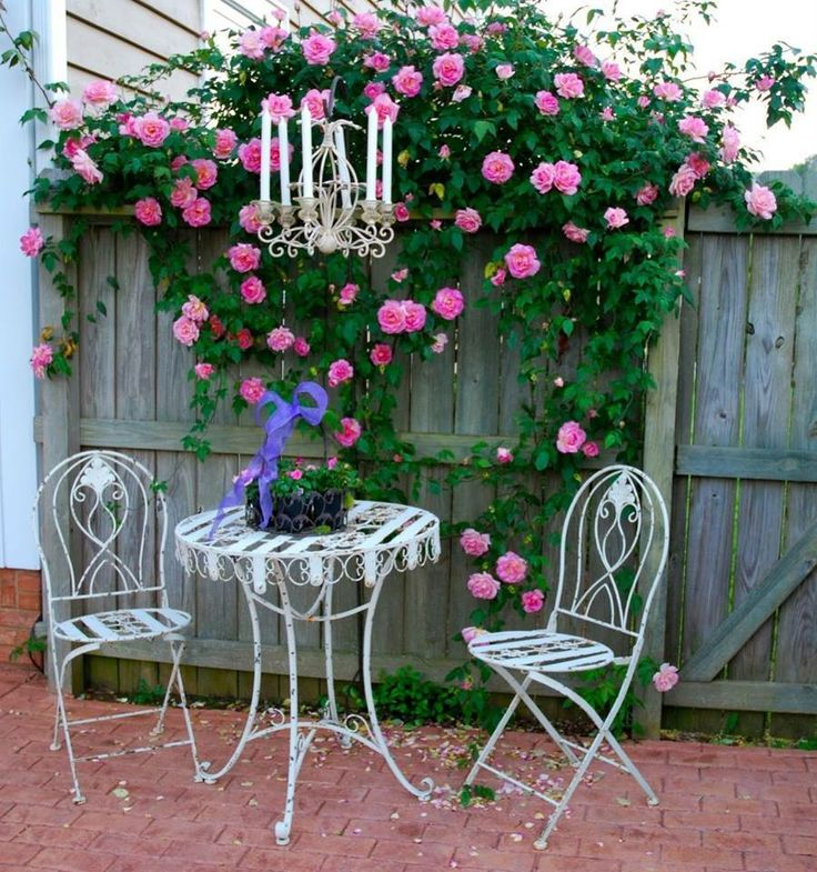 Schön A Pink Climbing Rose Helps To Create A Romantic Setting