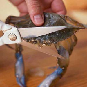 Cleaning Soft-Shell Crabs | CookingLight.com