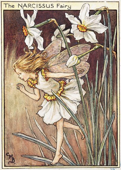 Cicely Mary Barker (1895–1973), Illustration of the Narcissus Fairy for Flower Fairies of the Garden | V