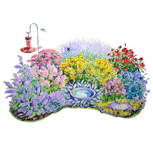 add feeder and bath to new garden planplants for a butterfly attracting perennial border